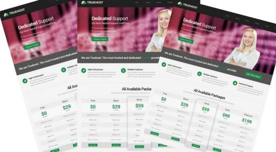 Truehost – Responsive HTML 5 Hosting Template