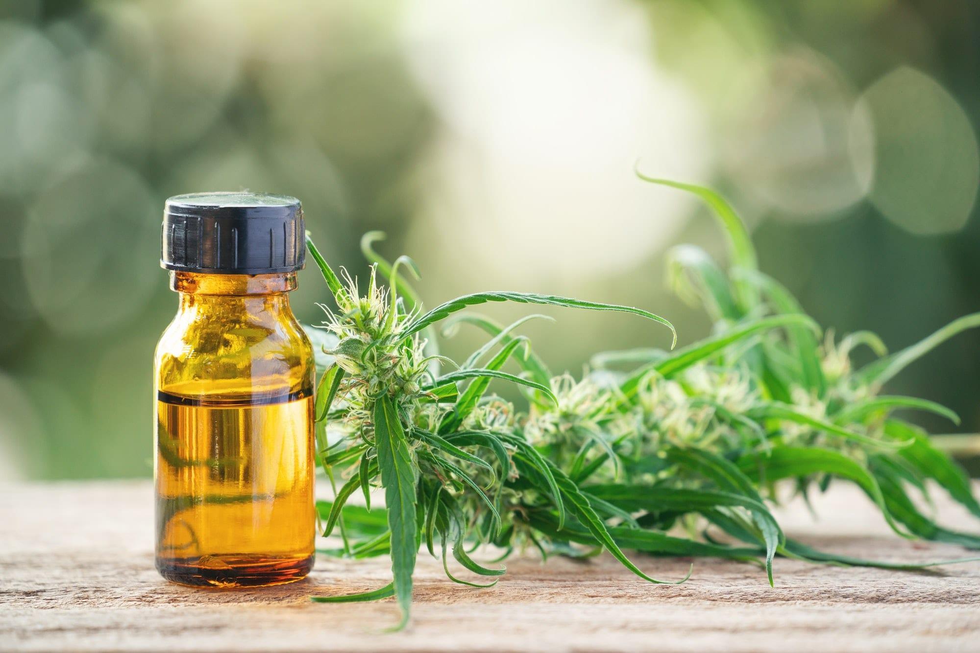 cannabis with cannabidiol (cbd) extract in a shopping cart