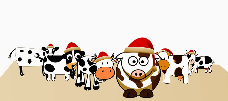Cow Themed Presents for women