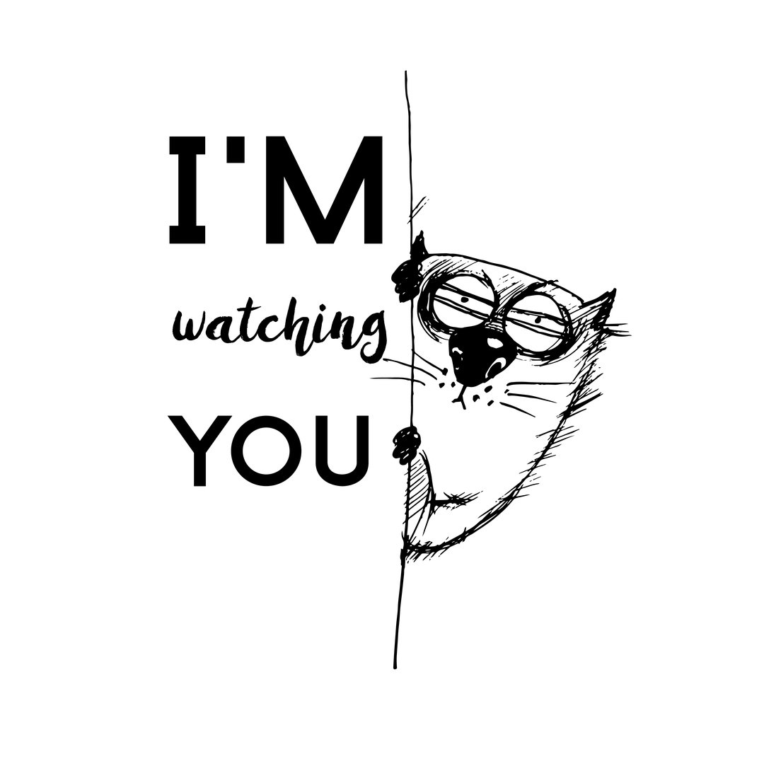 Funny Cat DP - I'm watching you poster