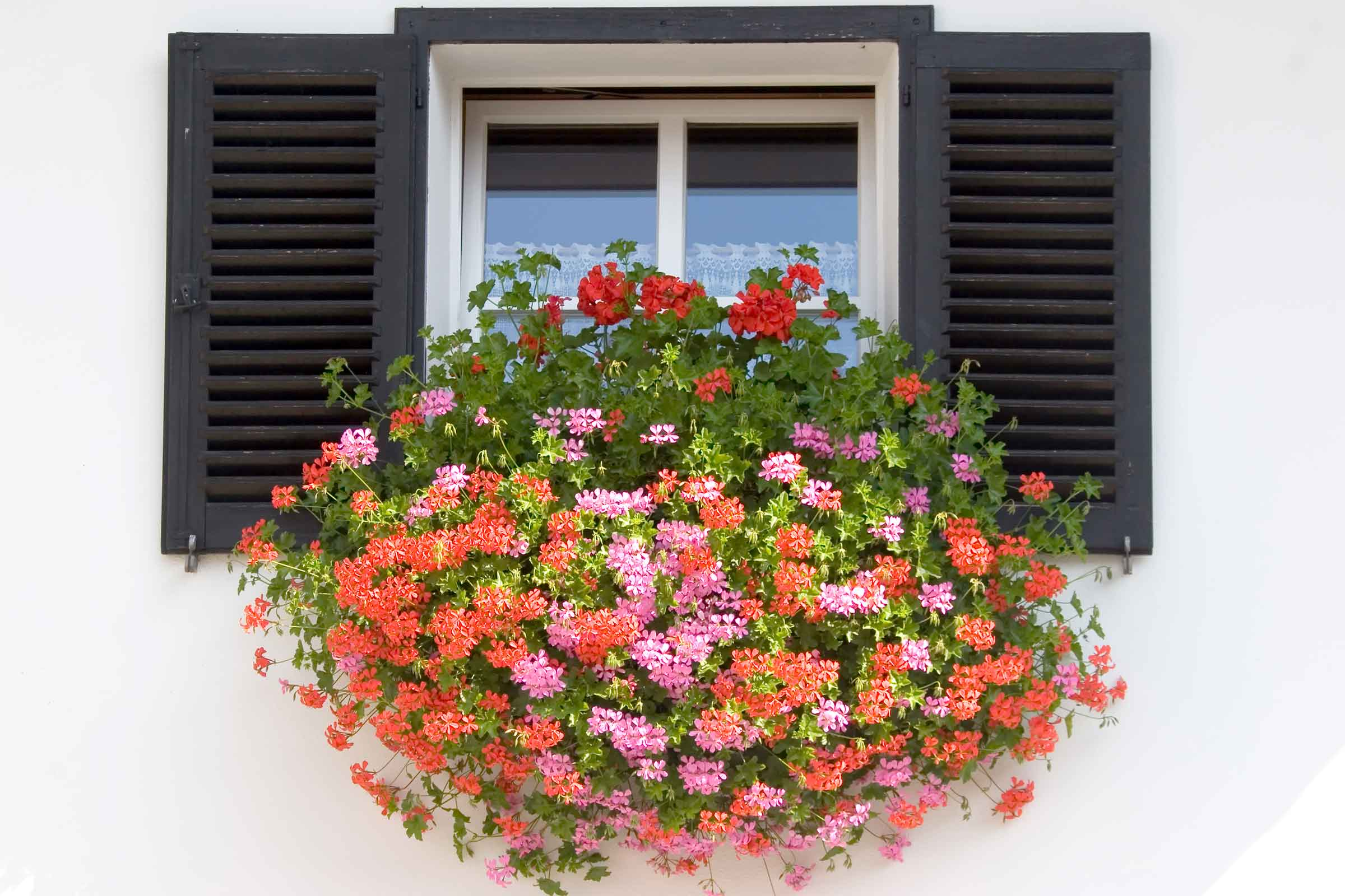 Window Box Installation Guide by FlowerWindowBoxes.com