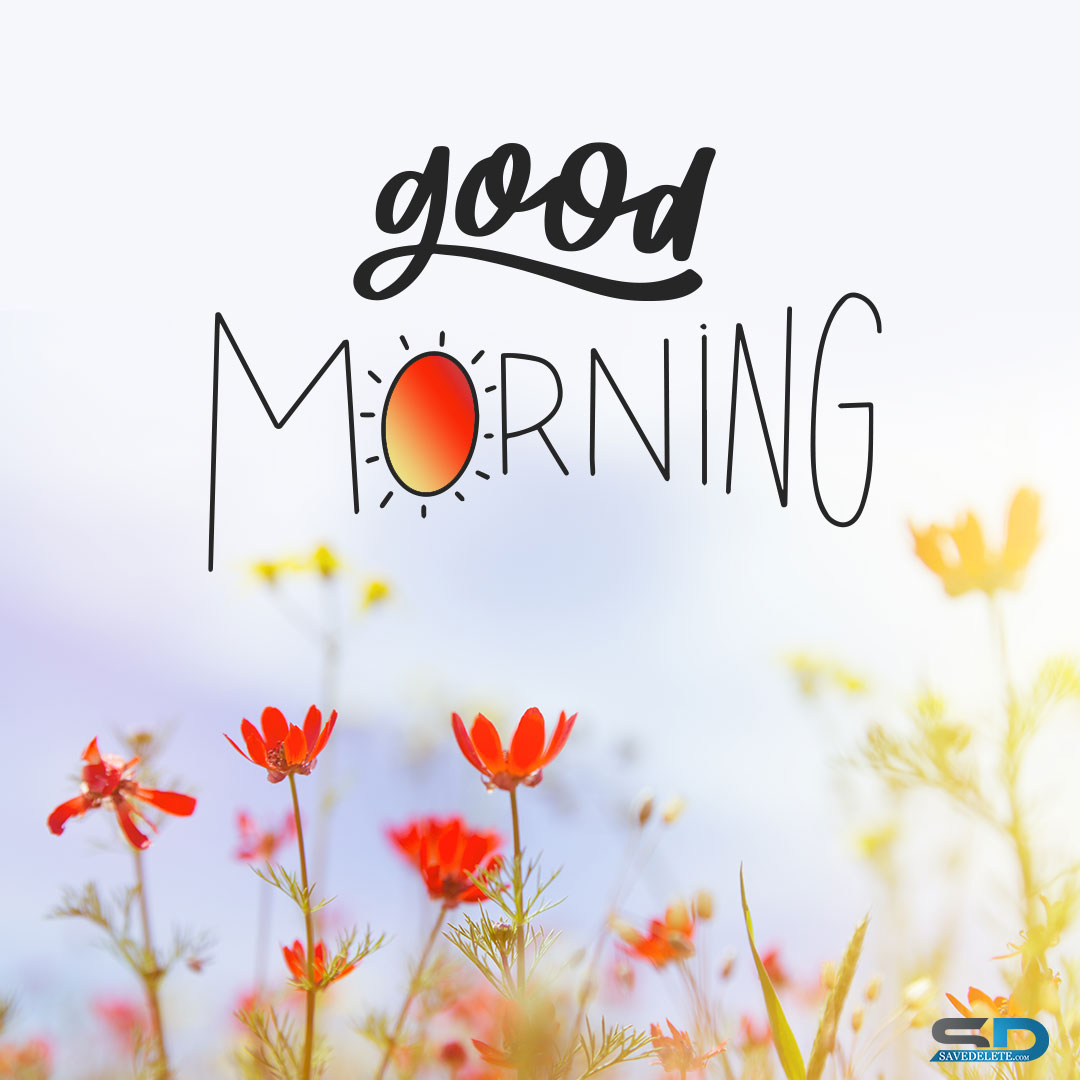 Good Morning Dp - Cup and flowers | SaveDelete