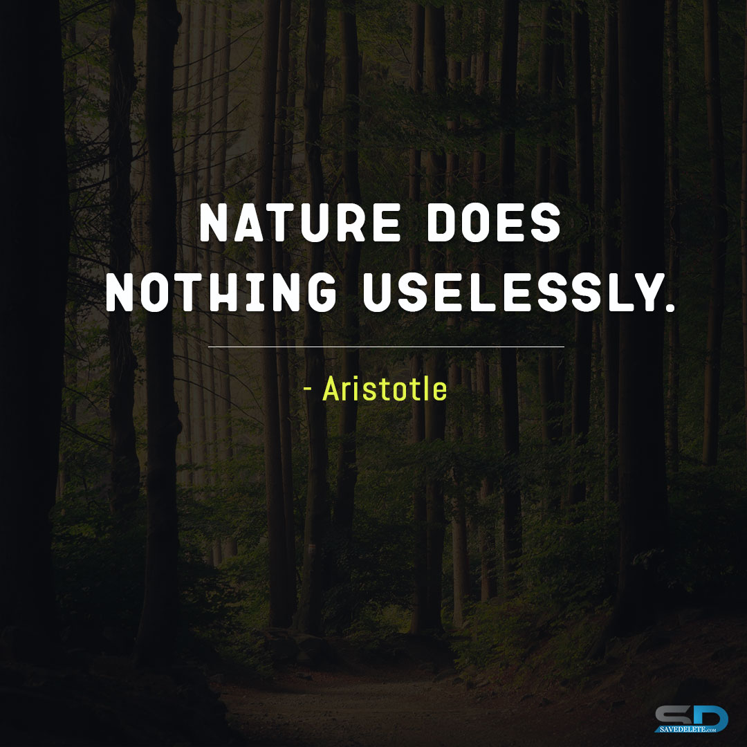Nature Does Nothing Uselessly. | SaveDelete