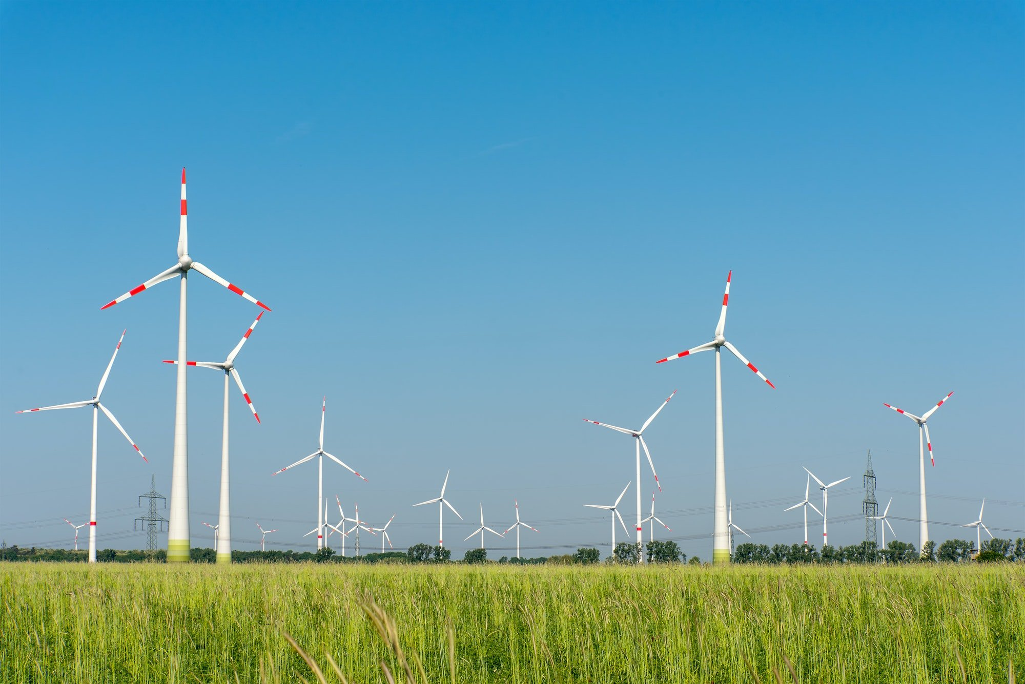 Wind generators in the fields