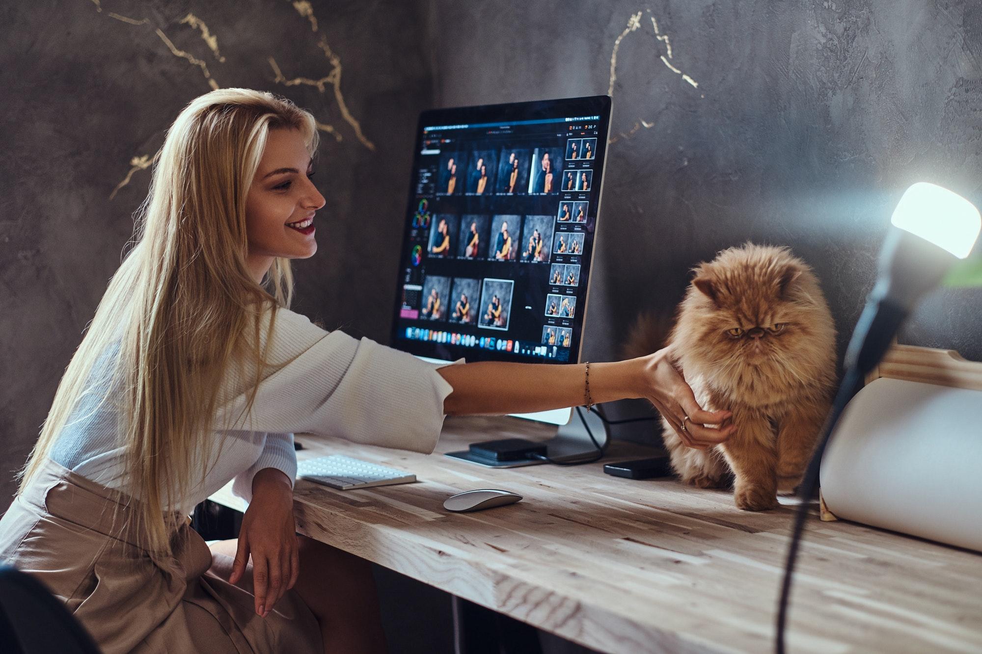 Beautiful pet owner and her persian cat