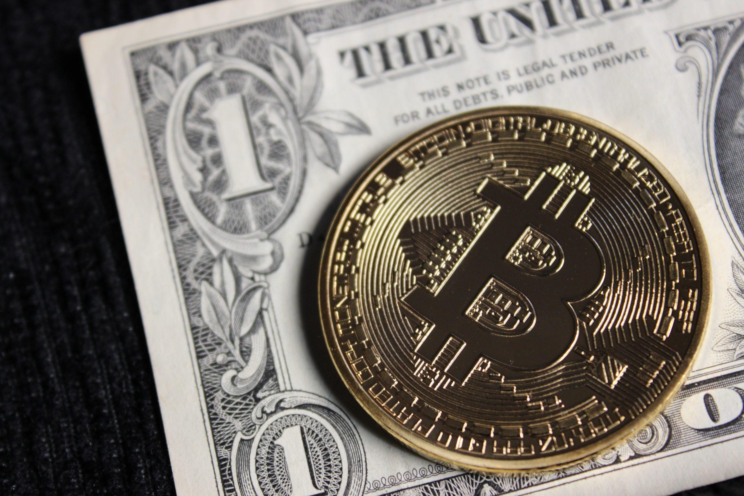 Shane mcleay mining bitcoins betting expert academy