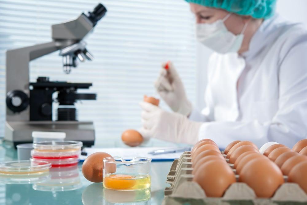 Food Manufacturing Regulations