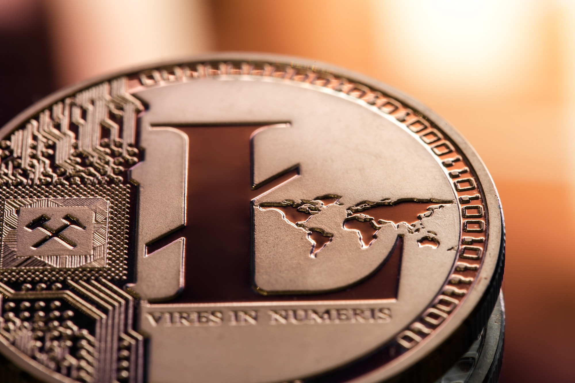 Coin litecoin closeup on a beautiful background.