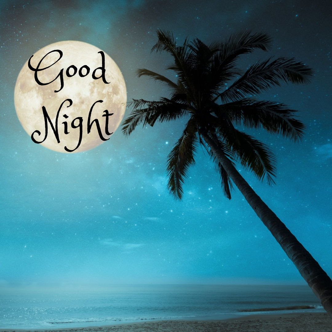 Good Night...Beautiful Night Sky...Full Moon