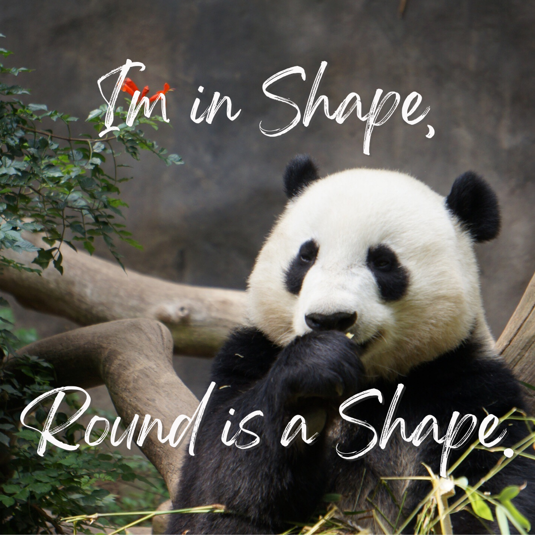 I'm In Shape, Round Is A Shape...Funny