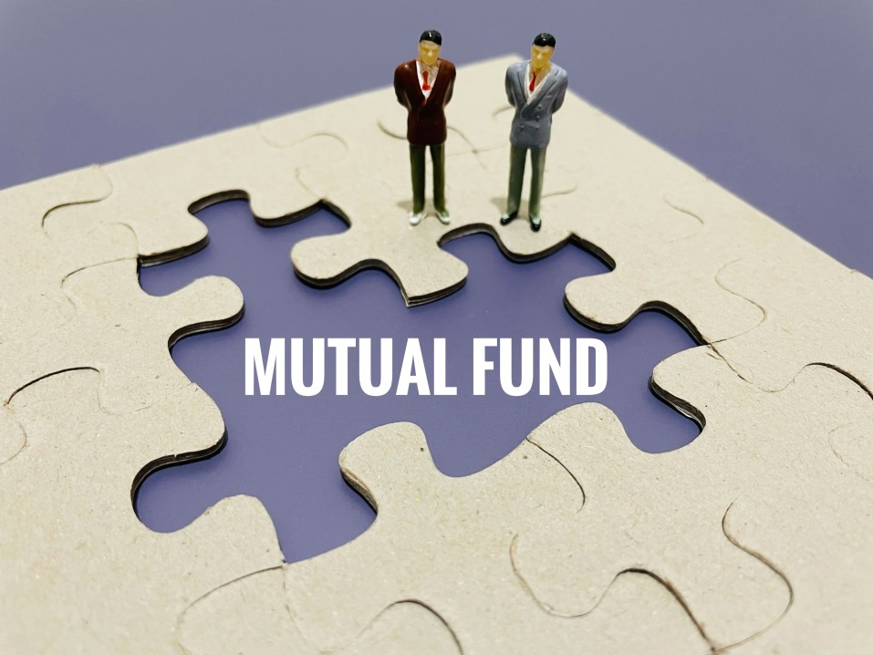 mutual-fund-is-managed-by-a-professional-portfolio-manager-that-purchases-securities-with-money